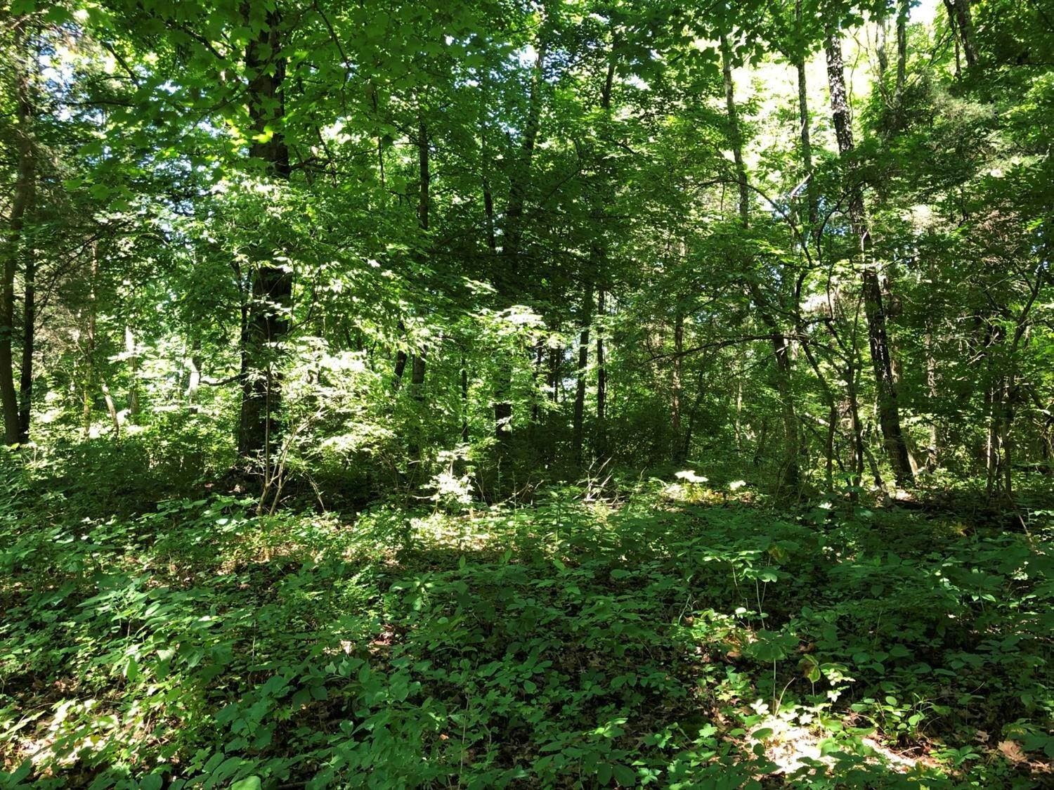 Land for Sale at Brittney Drive Harrison Township, Ohio 45030 United States