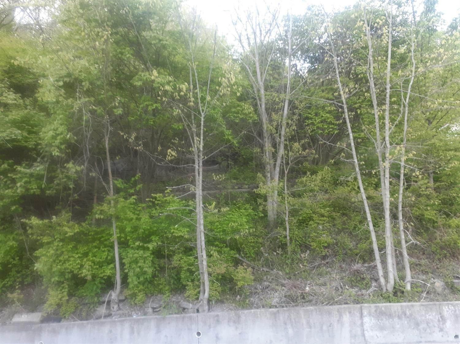 Land for Sale at 3806 Hillside Avenue Cincinnati, Ohio 45204 United States