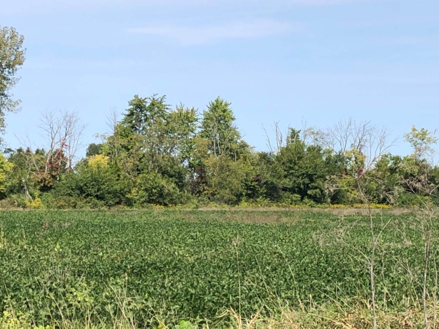 Acreage for Sale at 185 St Rt 28 Jefferson Township, Ohio 45148 United States