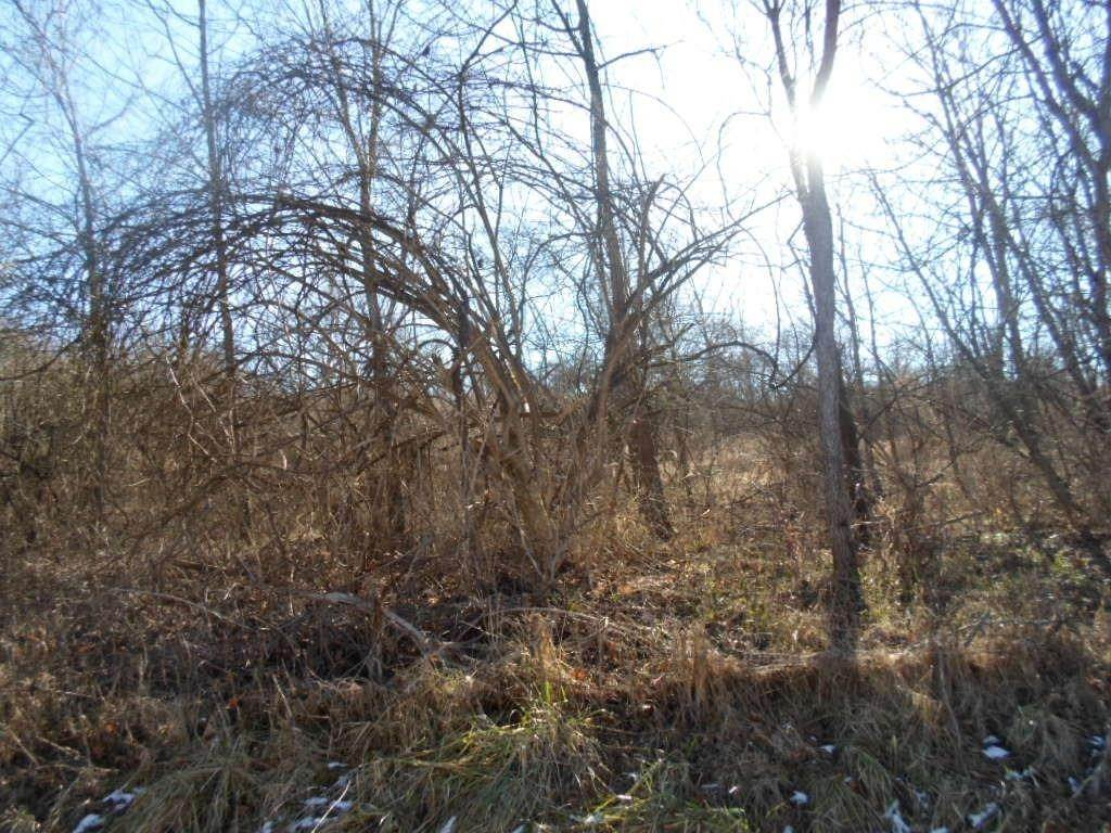 Land for Sale at 2205 S Wynn Road Morgan Township, Ohio 45053 United States