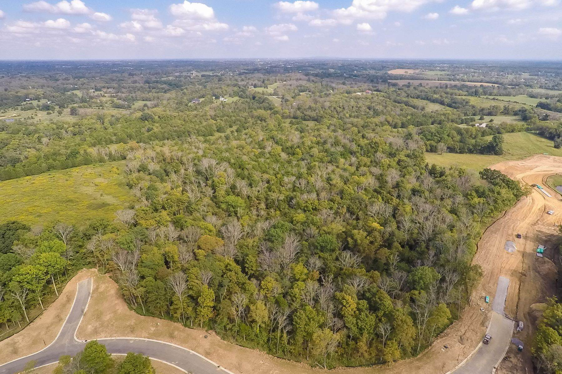 Land for Sale at 260 Shakes Creek Drive Fisherville, Kentucky 40023 United States
